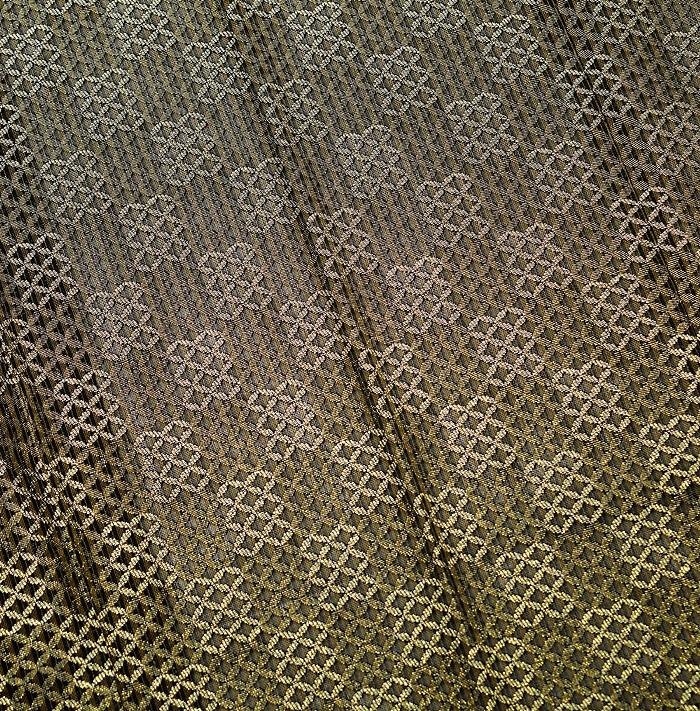 塵除け、シースルーコート、市松、柄行模様画像
